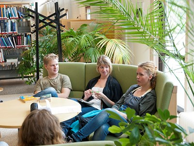Students sit in sofa group in the library and study, photo.