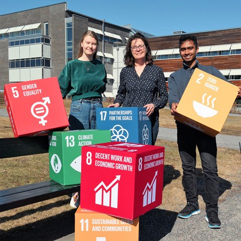 International students  show blocks with the 17 Sustainable Development Goals at Campus Ultuna. Photo.